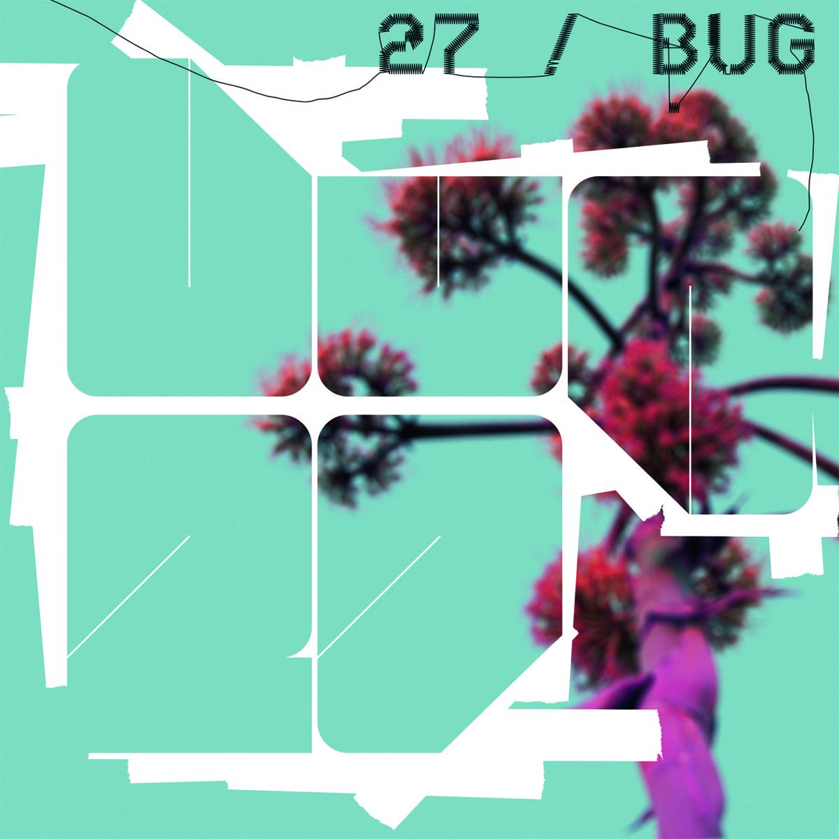 27 Band Bug Band Split Vinyl Cover