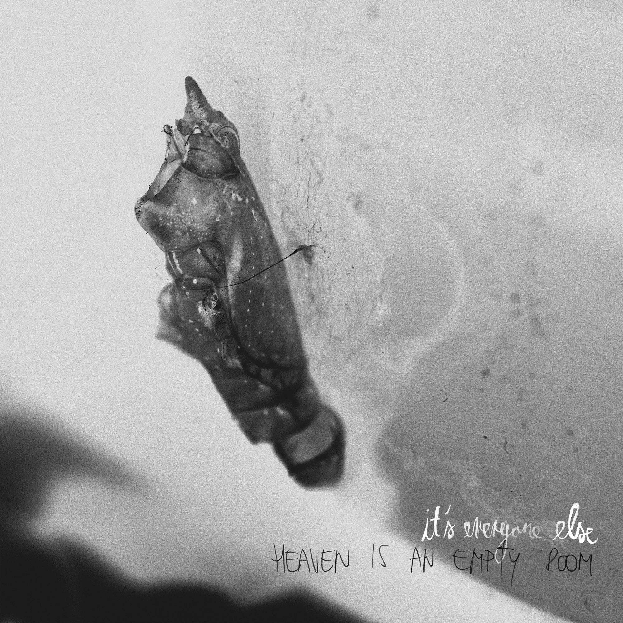 Its everyone else Band Music Heaven is an empty room album vinyl cover artwork