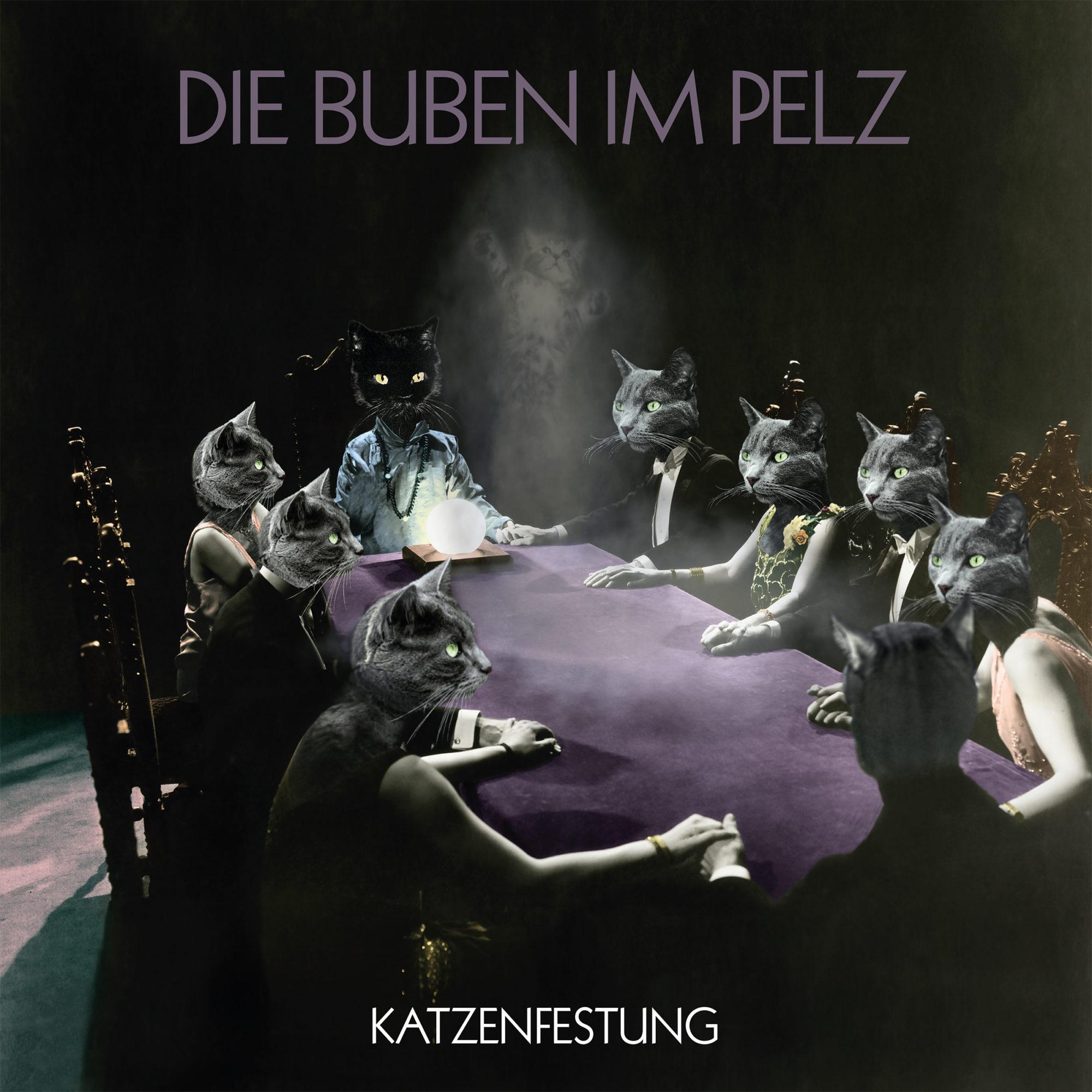 Die Buben im Pelz Band Katzenfestung Album Vinyl Cover Artwork Wien Berlin