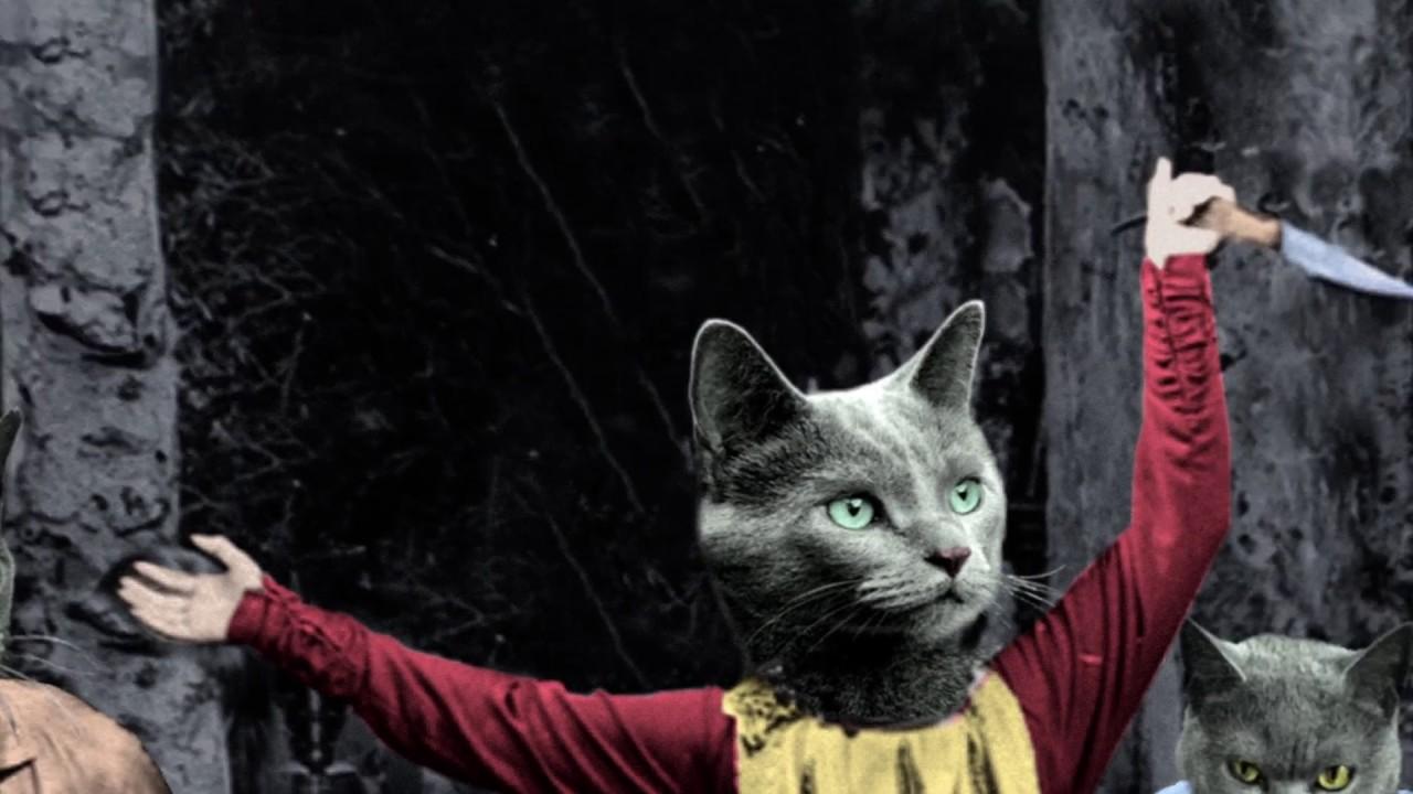 Die Buben im Pelz Band Katzenfestung